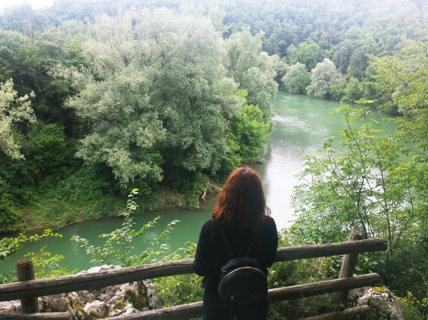 travel slovenia big berry bela krajina 13