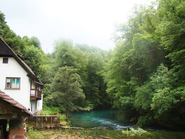 travel slovenia big berry bela krajina 24