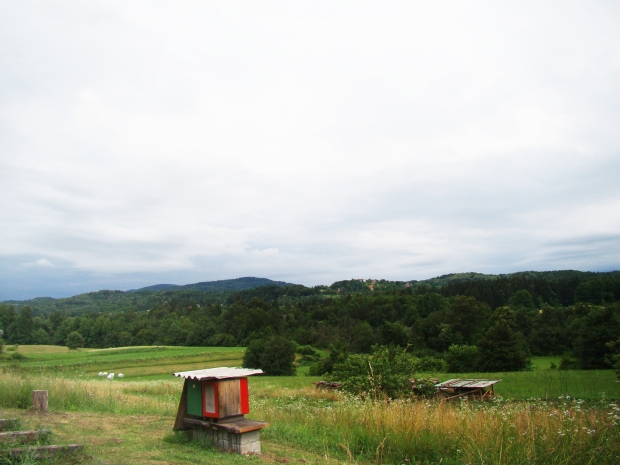 travel-slovenia-big-berry-bela-krajina-bee-hives