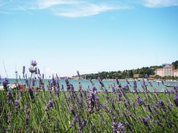 travel slovenia italy seaside piran portoroz blog tips 43